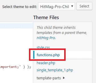 WordPress Theme Functions File