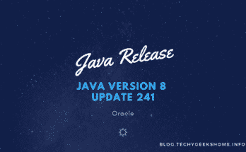 Java Version 8 Update 241