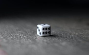 small white dice placed on wooden table