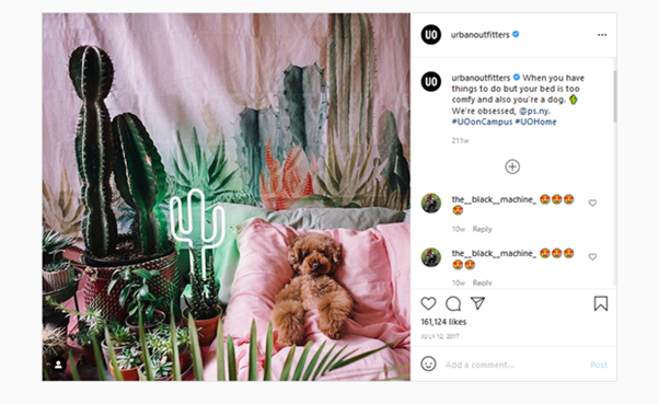 How to get more followers on Instagram 3